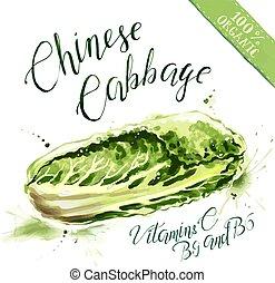 有機体である, care., 菜食主義者, 健康, 中国のキャベツ, 食物