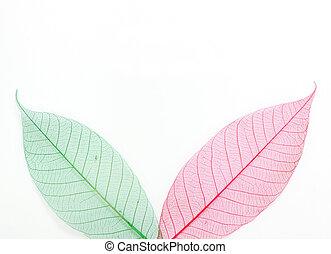有色人種, スケルトン, leafs, seamless, 抽象的, 背景