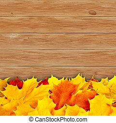 有色人種, 木製である, 葉, 秋, 板, 背景, かえで