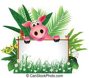 有趣, 豬, 由于, 空白徵候