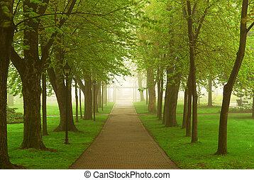 有雾, 公园