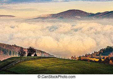 有雾, 同时,, 热, 日出, 在中, carpathian, 山