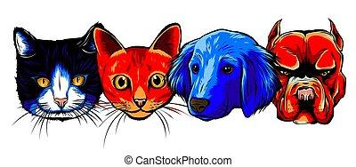 朋友, 最好, 狗, 曾經, 矢量, 貓, 插圖, -