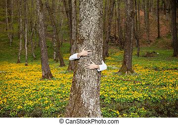 木の抱き締めること, 自然