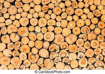 木の 切り株, 背景