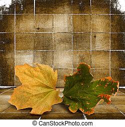木制, 秋季树叶, 明亮, 背景