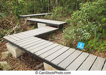 木制,  boardwalk, 人行道, 森林, 簽署