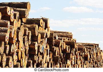 木材を伐採する