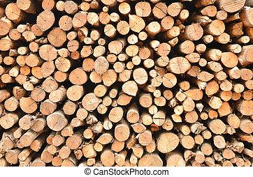 木杭, 木材を伐採する
