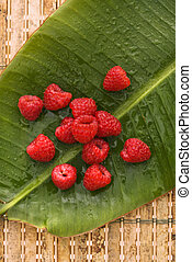 木莓, 仍然, life.