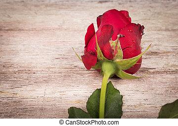 木製である, バラ, 赤い背景