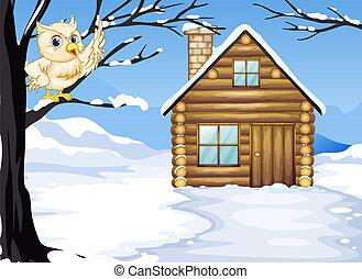 木製である, フクロウ, 木の枝, 家