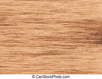 木製である, リング, 木, 構造, 背景