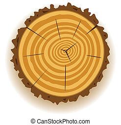 木製である, 切口