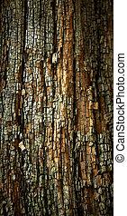 木製である, 古い, surface., 外気に当って変化した