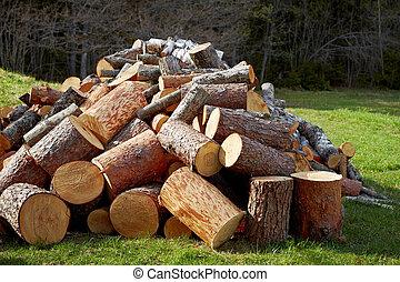 木製である, 山, 木材を伐採する