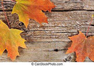 木製である, 紅葉, かえで, 背景
