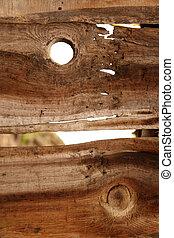 木製である, 自然, 手ざわり, 背景
