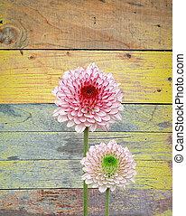 木製である, 花, 古い, 背景