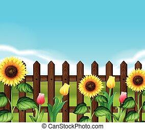 木製である, 花, 庭, フェンス