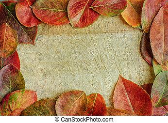木製である, backgroun, 葉, 秋