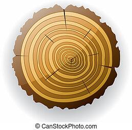 木製である, clip-art, 切口, ベクトル