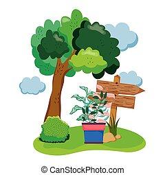 木製である, houseplant, 矢, フィールド
