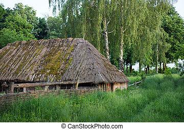 木製である, straw-thatched, 小屋, 古い, roof.