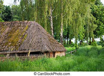 木製である, straw-thatched, roof., 古い, 小屋