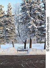 木製のベンチ, 中に, 町, 公園