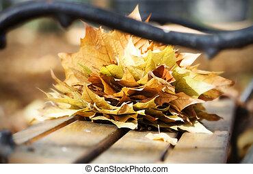 木製のベンチ, 中に, 秋, 公園