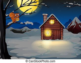 木製の家, 木, リス, ブランチ