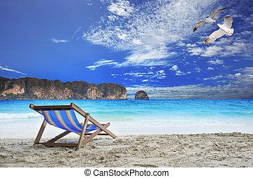 木頭, 椅子, 海灘, 在海, 邊, 由于, 美麗, 海鷗, 飛行的鳥儿, 上, 藍色的天空, 以及, 線, 石頭,...