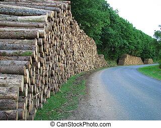 木頭, 紙, 工業, 開發