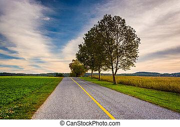 木, そして, フィールド, 前方へ, a, 道, 中に, 田園, ヨーク, 郡, pennsylvania.