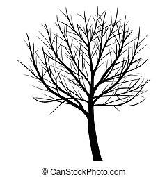 木, ∥で∥, 死んだ, ブランチ