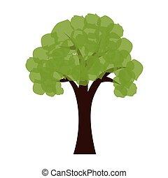 木, エコロジー, 緑