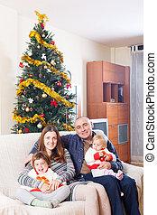 木, クリスマス, 家族