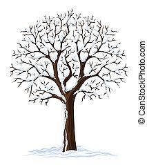 木, シルエット, 冬, 季節