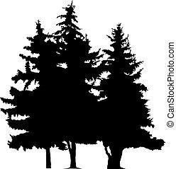 木, シルエット, 松