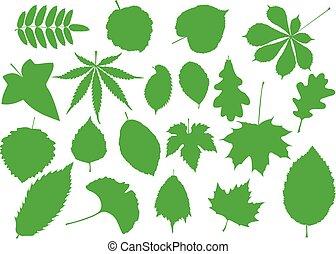木, シルエット, 葉, セット, 葉