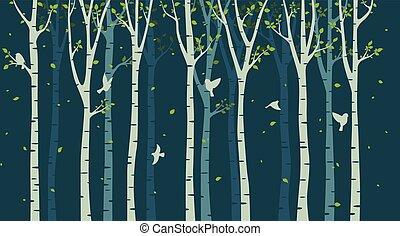 木, シルエット, 鳥, 背景, シラカバ