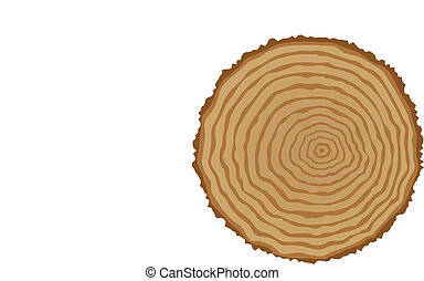 木, セクション, 切り株, 交差点