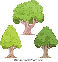 木, セット