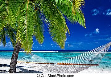 木, ハンモック, やし, ∥間に∥, 浜, 空