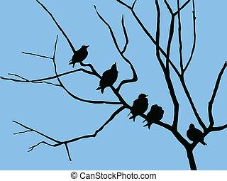 木, ベクトル, シルエット, ブランチ, ムクドリ