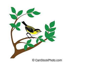 木, ベクトル, シルエット, 鳥