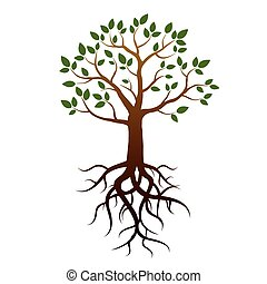 木, ベクトル, 緑, 定着する, leafs