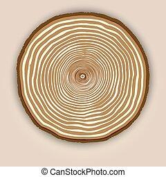 木, リング, 木, 手ざわり, ベクトル, 背景