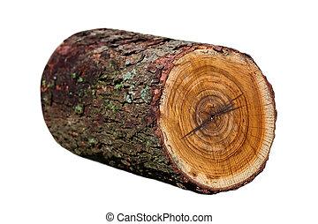 木, 丸太